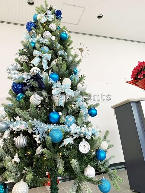 クリスマスツリーブルー